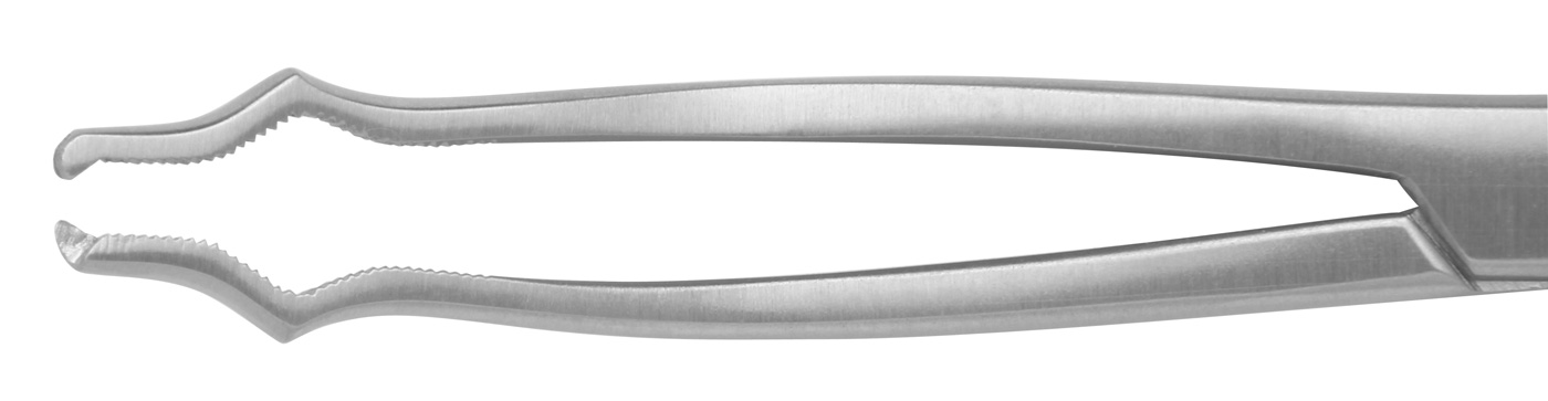 Knochenhaltezange   17.5 cm